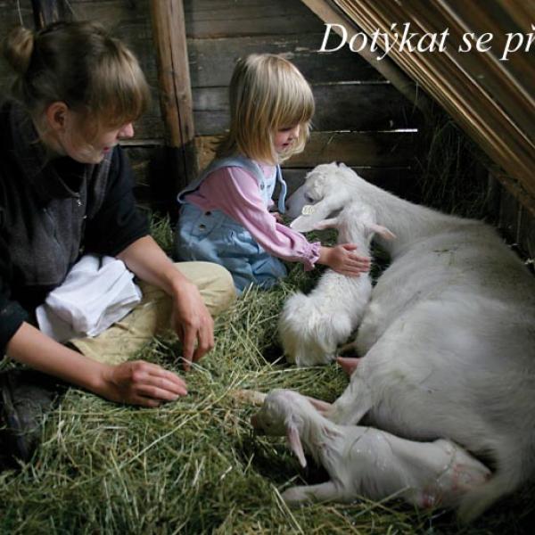 Farma Klokočí, autor: archiv Farma Klokočí