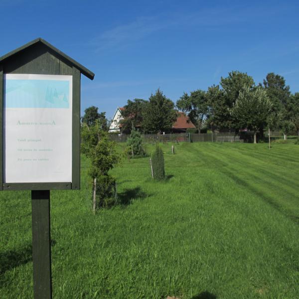 Arboretum Bulovka