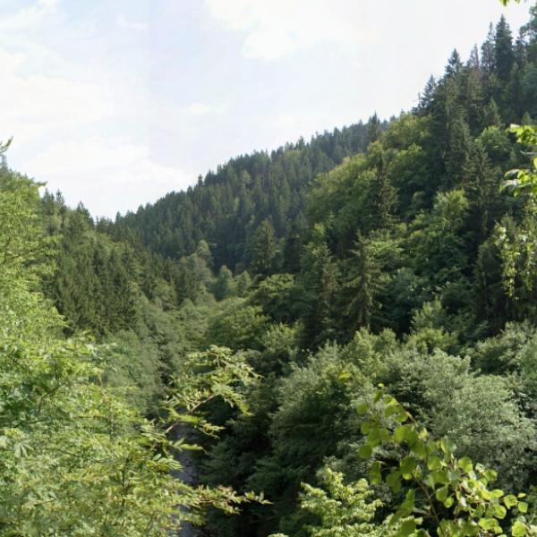 Riegrova stezka - Böhmova vyhlídka