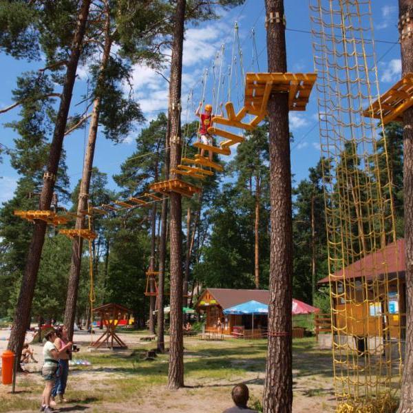 Lanový park Hamr na Jezeře, autor: Štěpán Heger