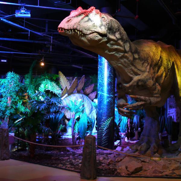 Allosaurus, autor: DinoPark