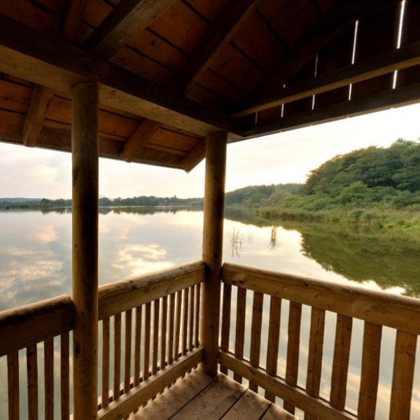 Novozámecký rybník u Zahrádek   Ptačí pozorovatelna