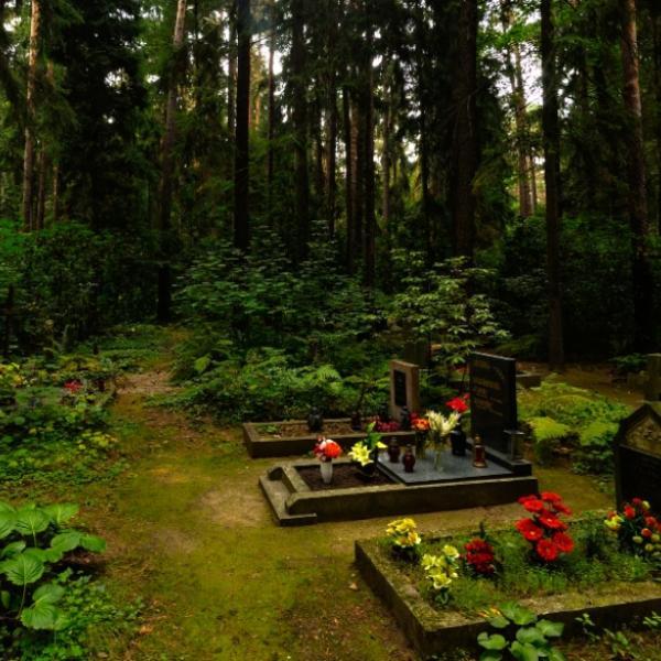 Nový Bor   Lesní hřbitov