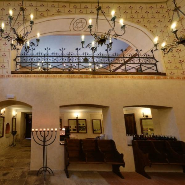 Synagoga Turnov