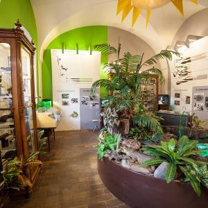 Vlastivědné muzeum a galerie Česká Lípa, autor: Jiří Stránský