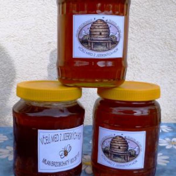 Novoměstský med, autor: Milan Brzobohatý