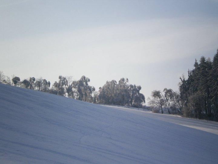 Běžecký okruh u Rychnova u Jablonce nad Nisou