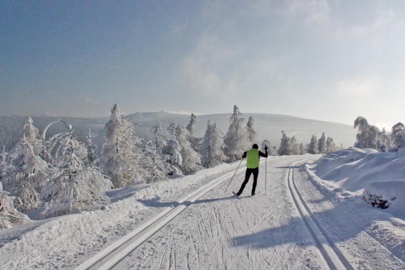 Běžecké trasy