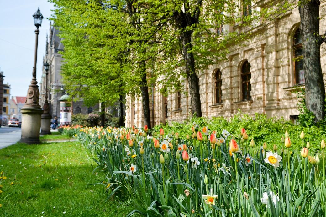 Jarní Liberec
